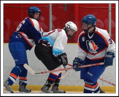 1hockeylg